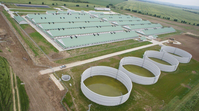Tolnában épít állattenyésztő telepet a Merkbau