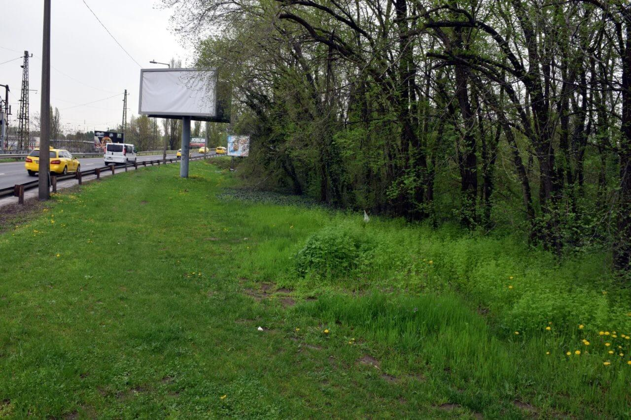 Tizenkét teherautónyi hulladéktól szabadul meg a kispesti erdő