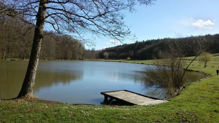 A Ropolyi-tó