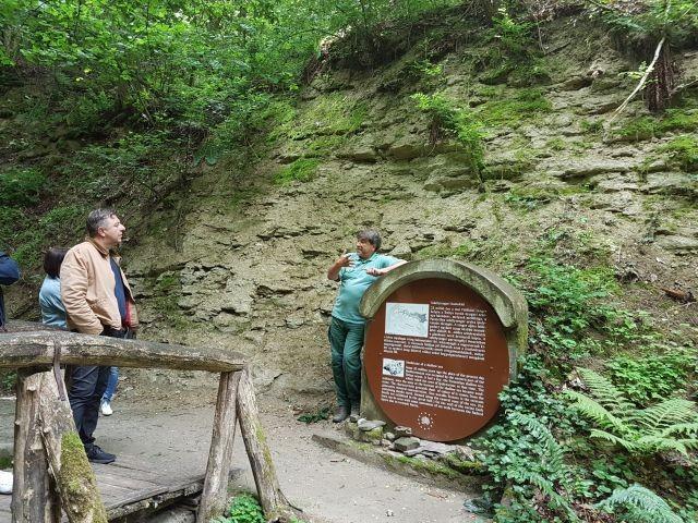 Tematikus ősvilági túrák Ipolytarnócon