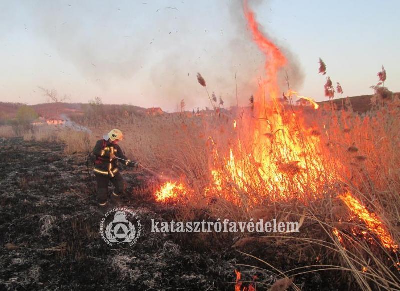 Közel öthektárnyi terület égett le tegnap Nógrád megyében