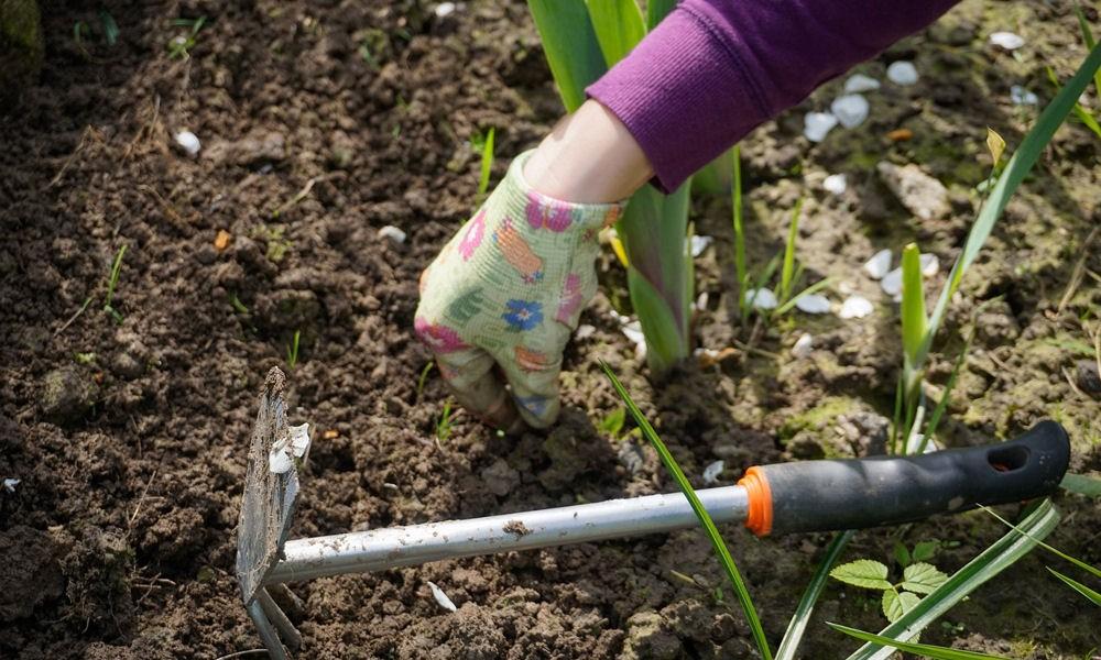 A kutatók szerint nincs jobb orvosság a kertészkedésnél