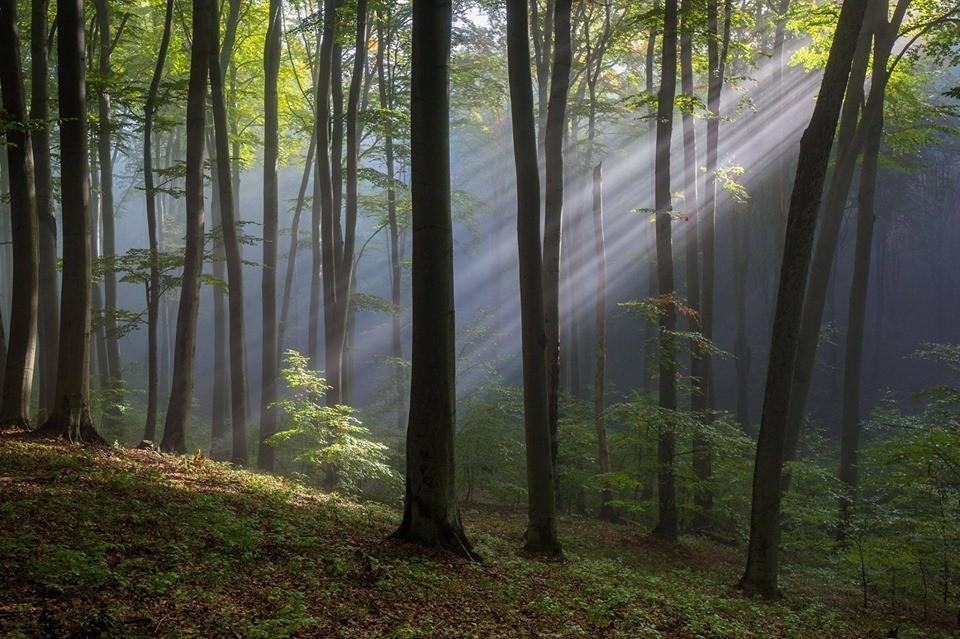 Május 11-én egy Fotós Napot szervez a Novohrad-Nógrád Geopark