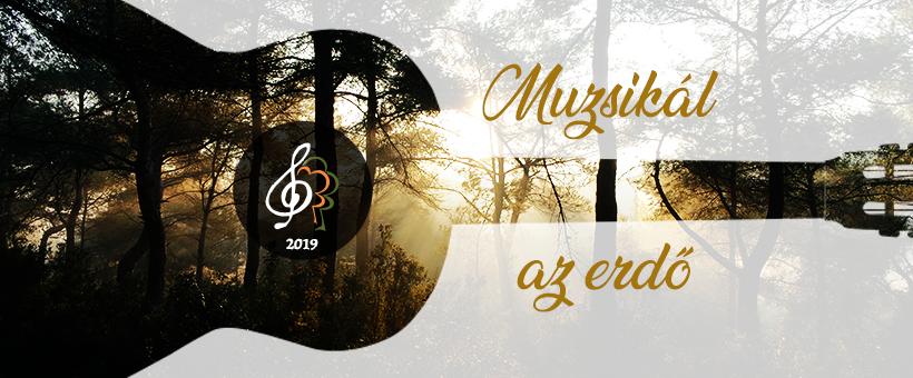 Szakvezetéses sétákat és koncerteket is kínál a Muzsikál az erdő a Mátrában