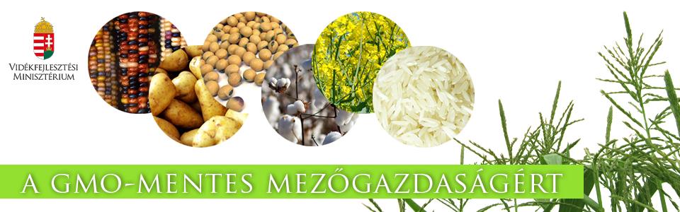 Magyarország elkötelezett a GMO-mentes élelmiszerek mellett