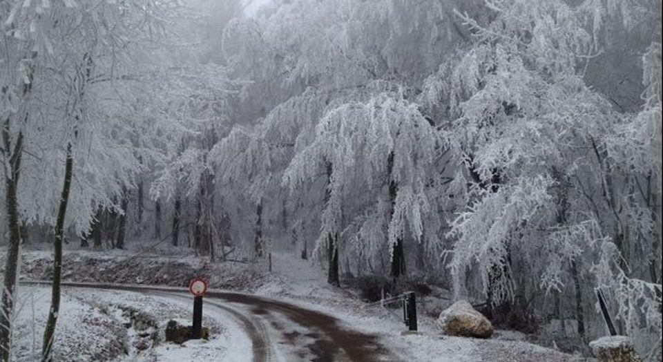 Veszélyesen csúszósak az erdei utak a Pilisi Parkerdőben