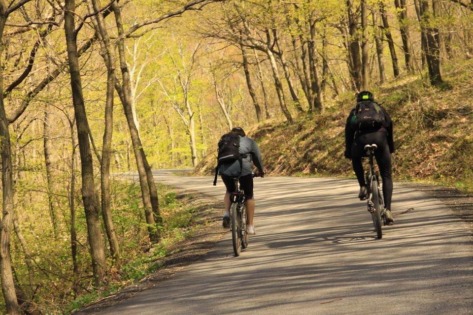 Pilis-Bike: 28 túraútvonalat és 9 parkolót kaptak a bringások
