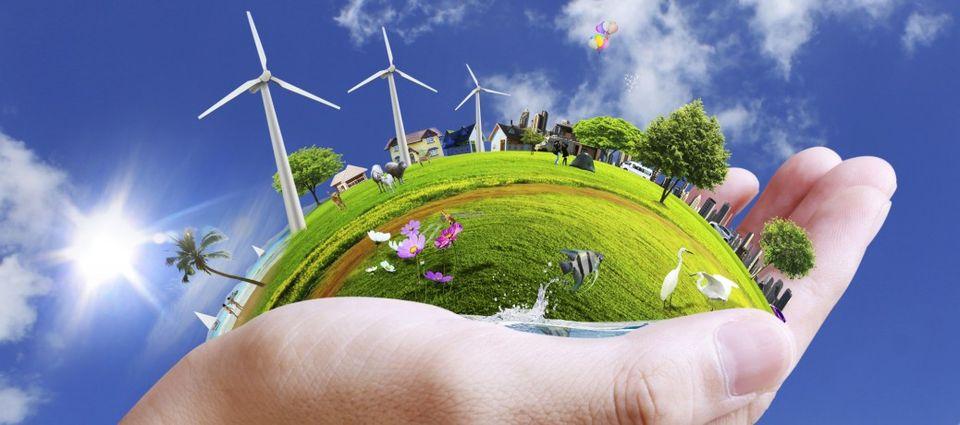 Környezetvédelmi program indul Dunakeszin