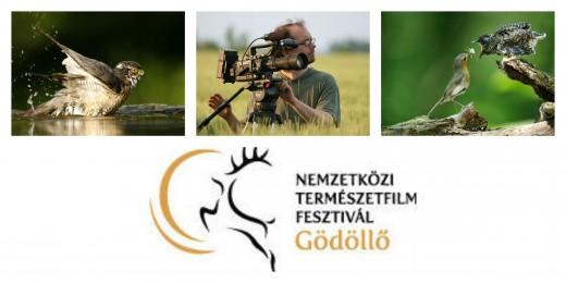 A legjobb természetfilmek ismét Gödöllőre jönnek!