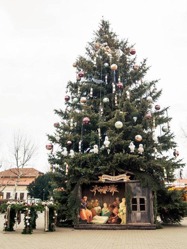 Cegléden állították fel az ország legszebb karácsonyfáját