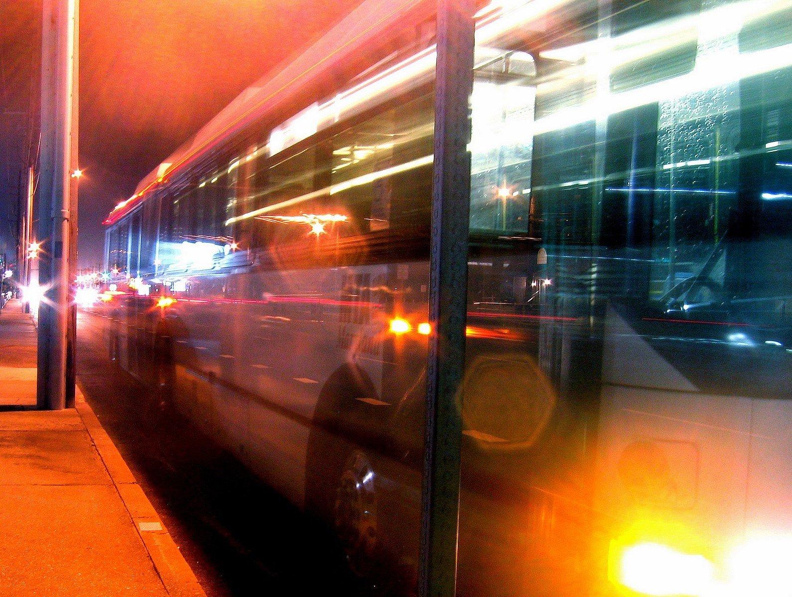 Nyáron éjszakai buszok közlekedhetnek a Dunakanyarban