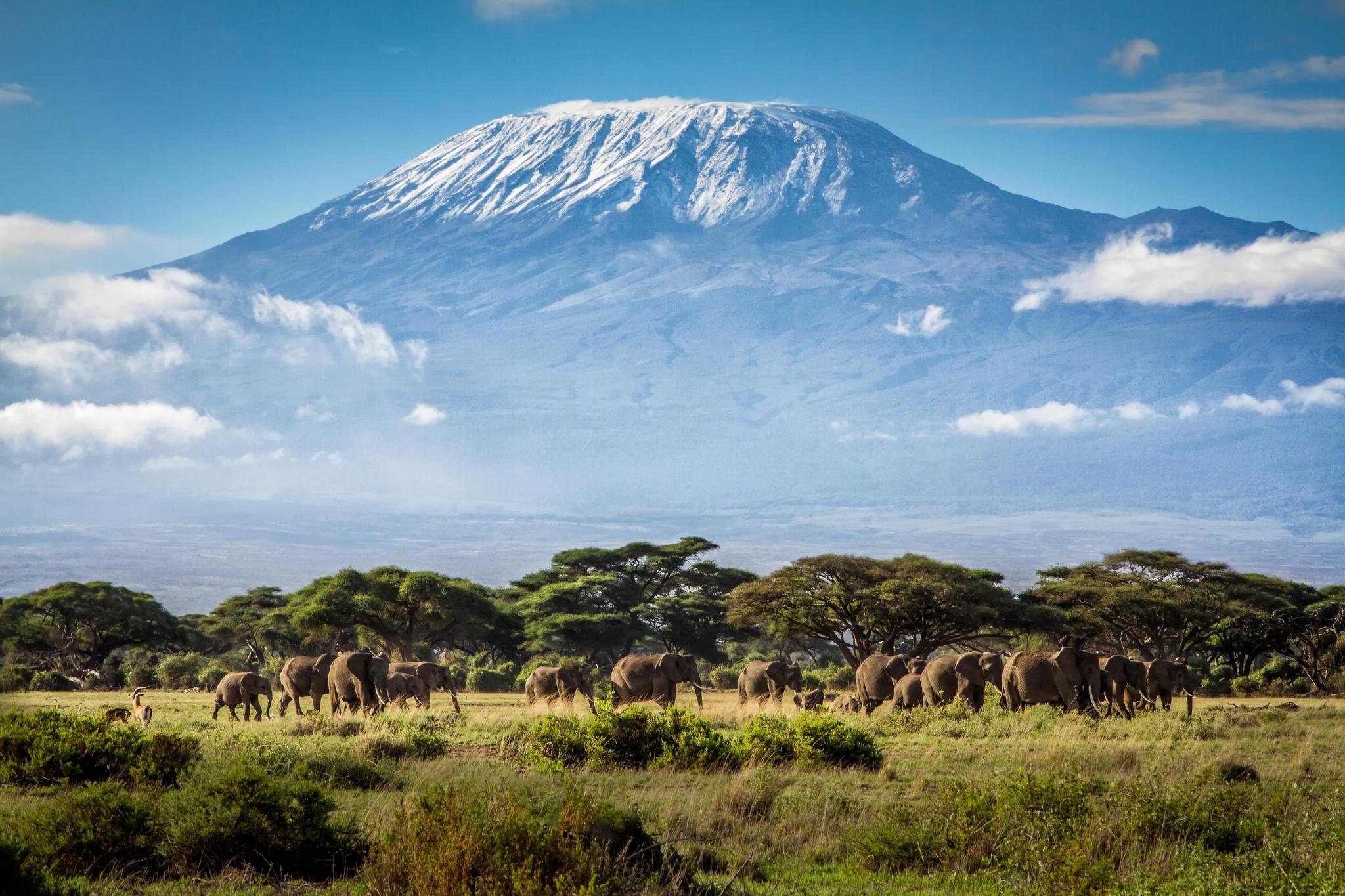 Átültetett tüdővel mászta meg a Kilimandzsárót két magyar