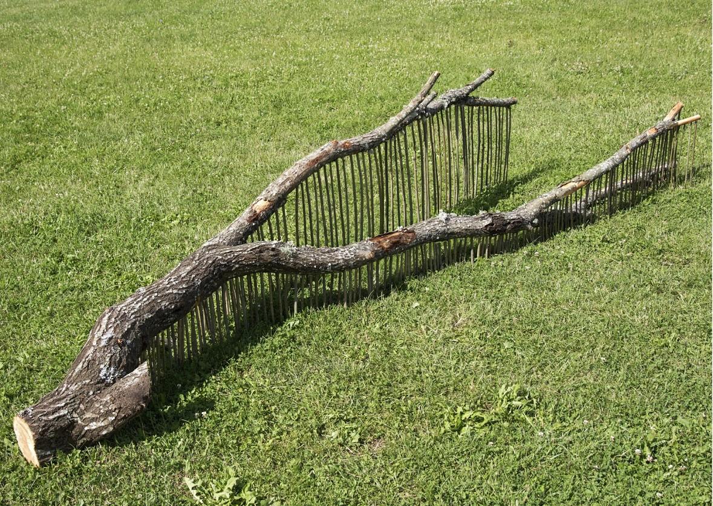 A Gyilkos-tótól Leányfaluig feltárták az értékeket a természetművészek