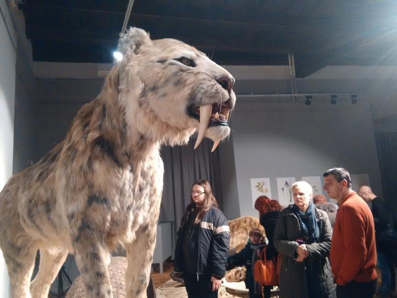 Kulturális hűsöléssel múzeumban is átvészelhetjük a meleget