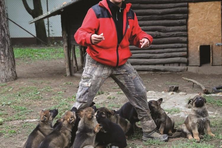 Népes kiskutyaáldás érkezett a Dunakeszi kiképző központba