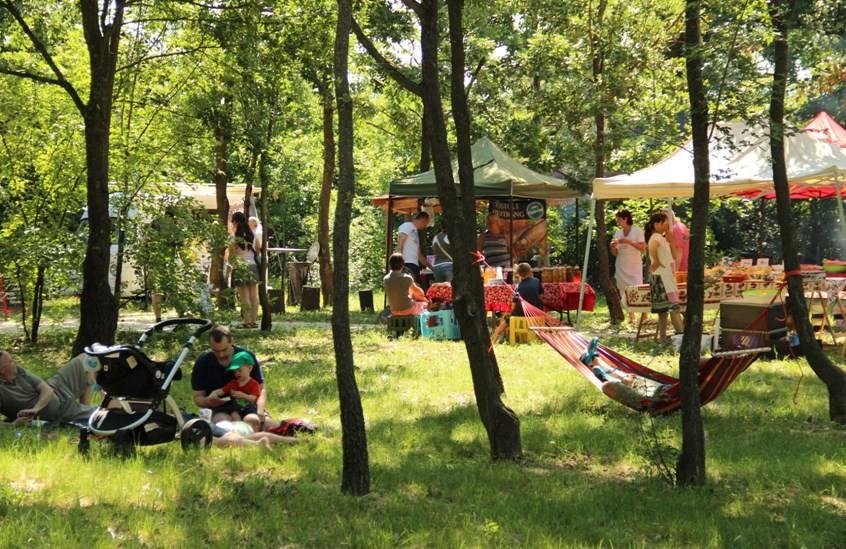 Az erdőben szerveznek piacot Budakeszinél