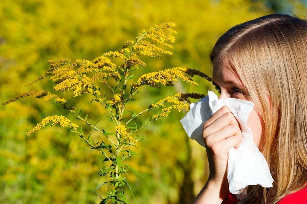 Allergiás? Ezek a pollenek vannak már most a levegőben
