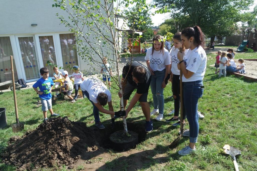Gimanzisták ültettek fát Érden az ovisoknak