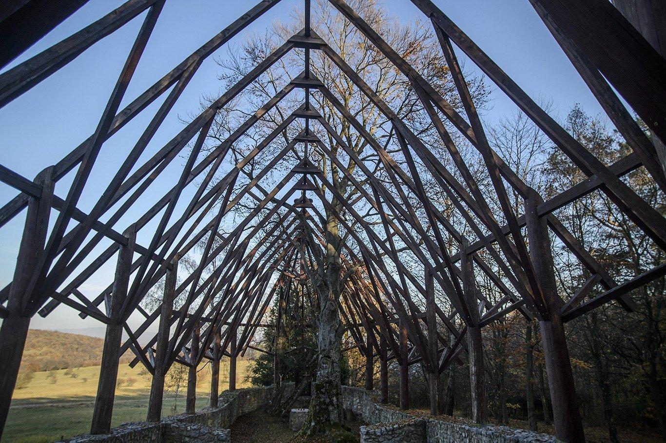Növények által támadt fel egy félezeréves templom a Felvidéken