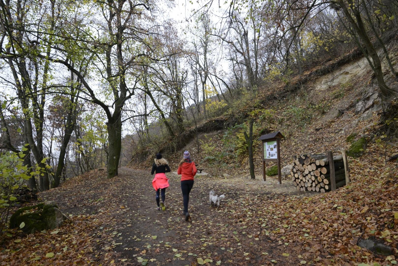 Új attrakciókkal bővült és megszépült Budapest egyik legnépszerűbb sétaútja