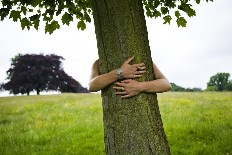 Öleljük meg a fákat az erdők világnapján!