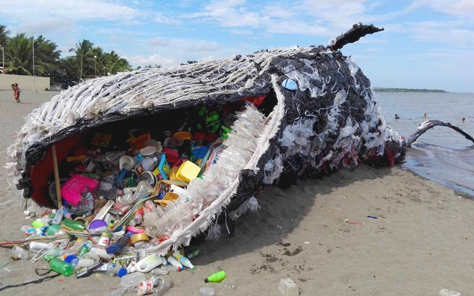 A környezetszennyezés csúcsa: 40 kiló műanyagot találtak egy bálna gyomrában