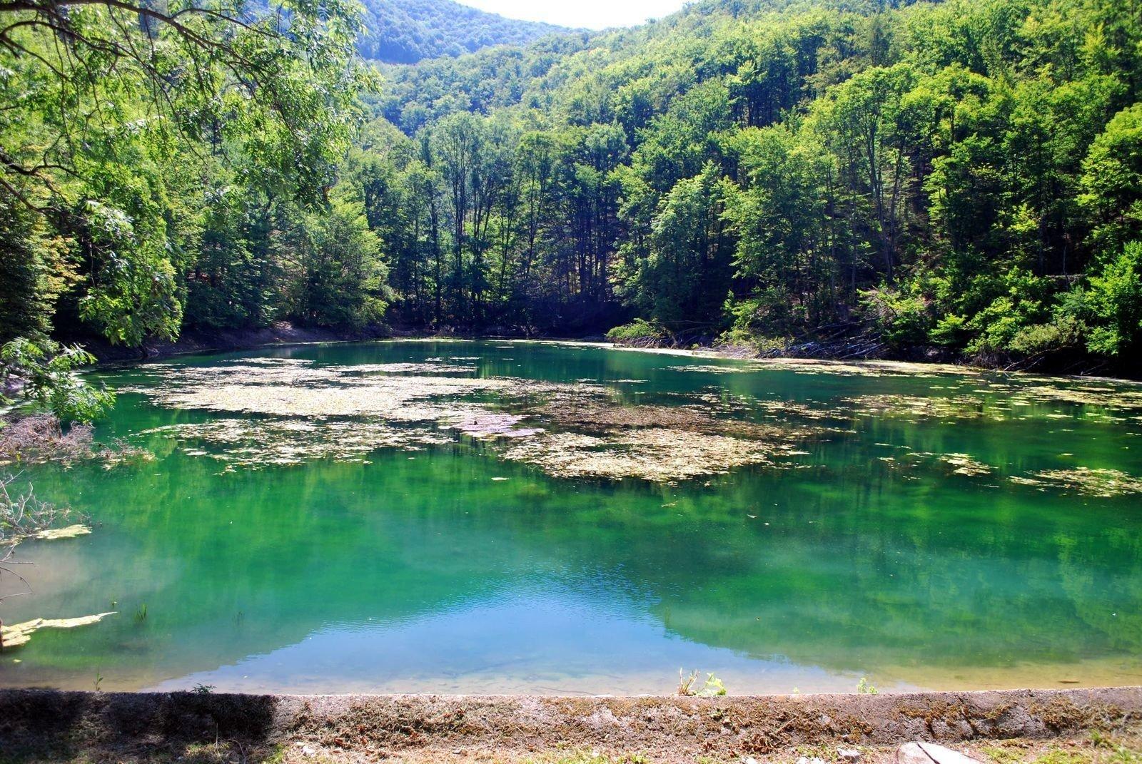Országos kampány keretein belül fejlődnek nemzeti parkjaink