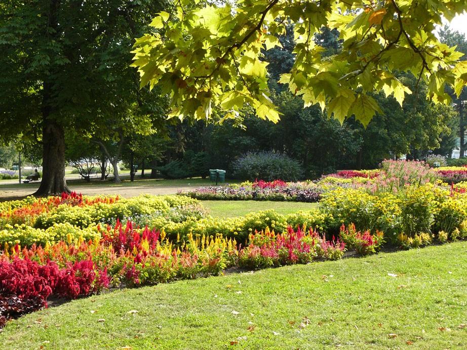 Idén Kaposvár képviseli hazánkat az Európai Virágos Városok versenyén