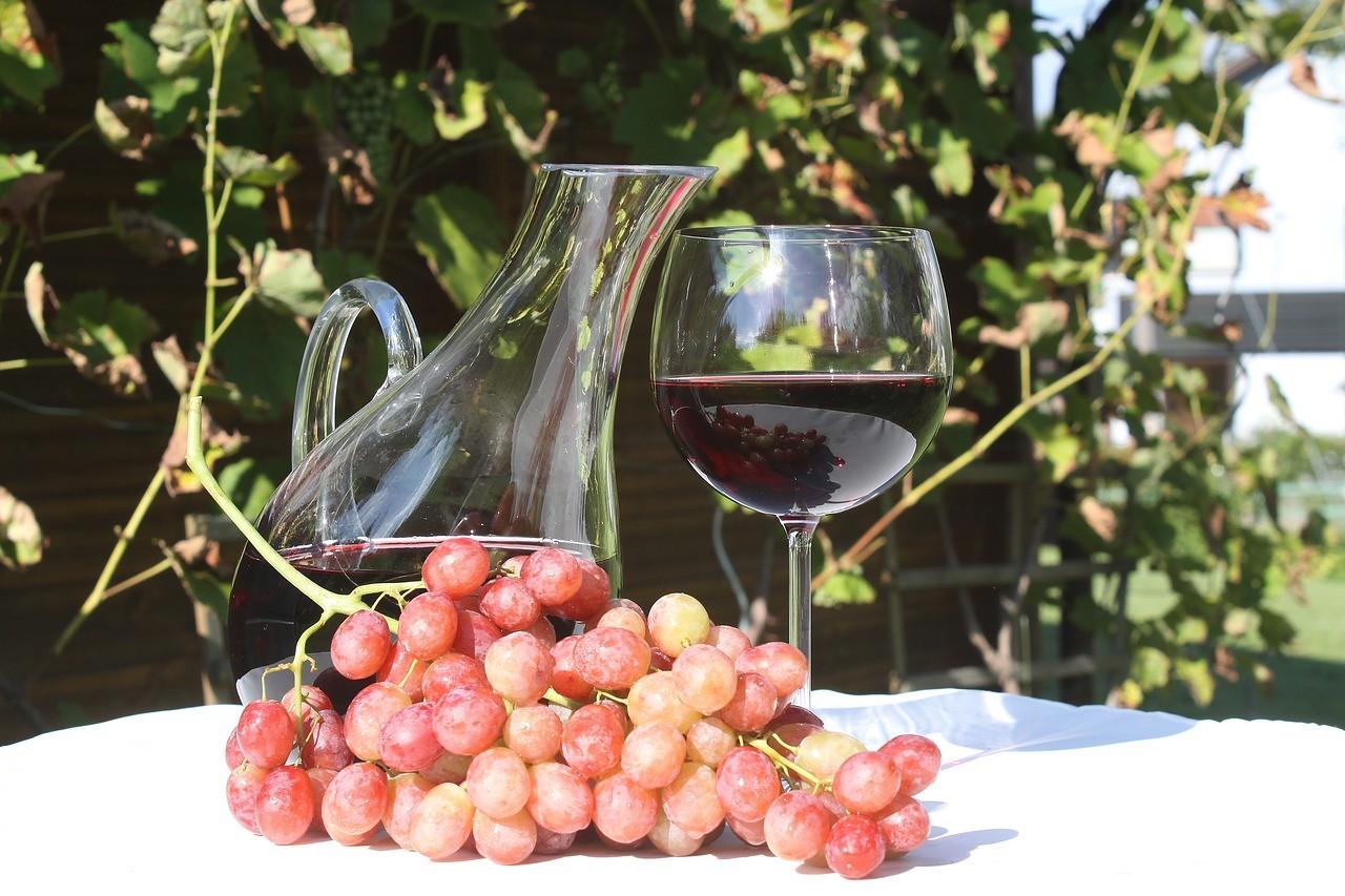 Böhönyén virágzik a szőlő- és bortermelés, nő a beruházások és a foglalkoztatottak száma