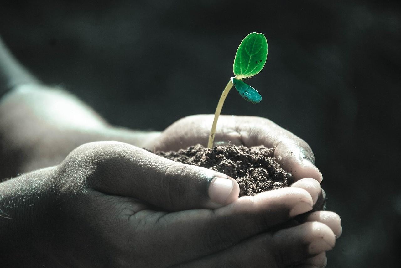 A földek tulajdonviszonyait tisztázó program költsége 9,5 milliárd forint