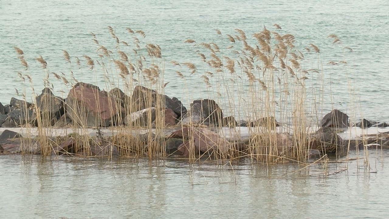 Még mindig teljes gőzzel eresztik a vizet, a Balaton vízállása 1 centiméterrel csökkent