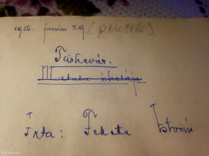 Több mint húszmillió forintért kelt el Fekete István Tüskevár regényének eredeti, tintával írt kézirata