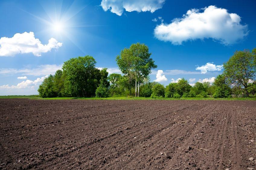 Tolna megyében is töretlenül nő a termőföld ára