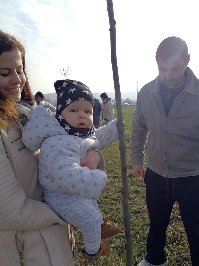 Együtt cseperednek a fák a kisbabákkal Bonyhádon
