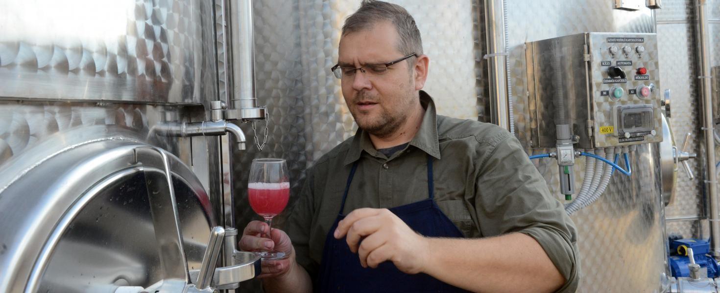 Finom borok készülnek, kiváló évjárat ígérkezik szekszárdi borászok szerint