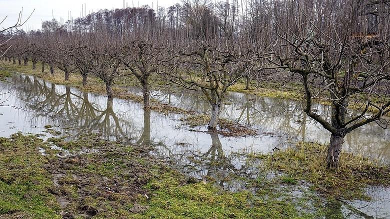 Tolnanémedi-dombovári szakaszon harmadfokú a belvízvédelmi készültség