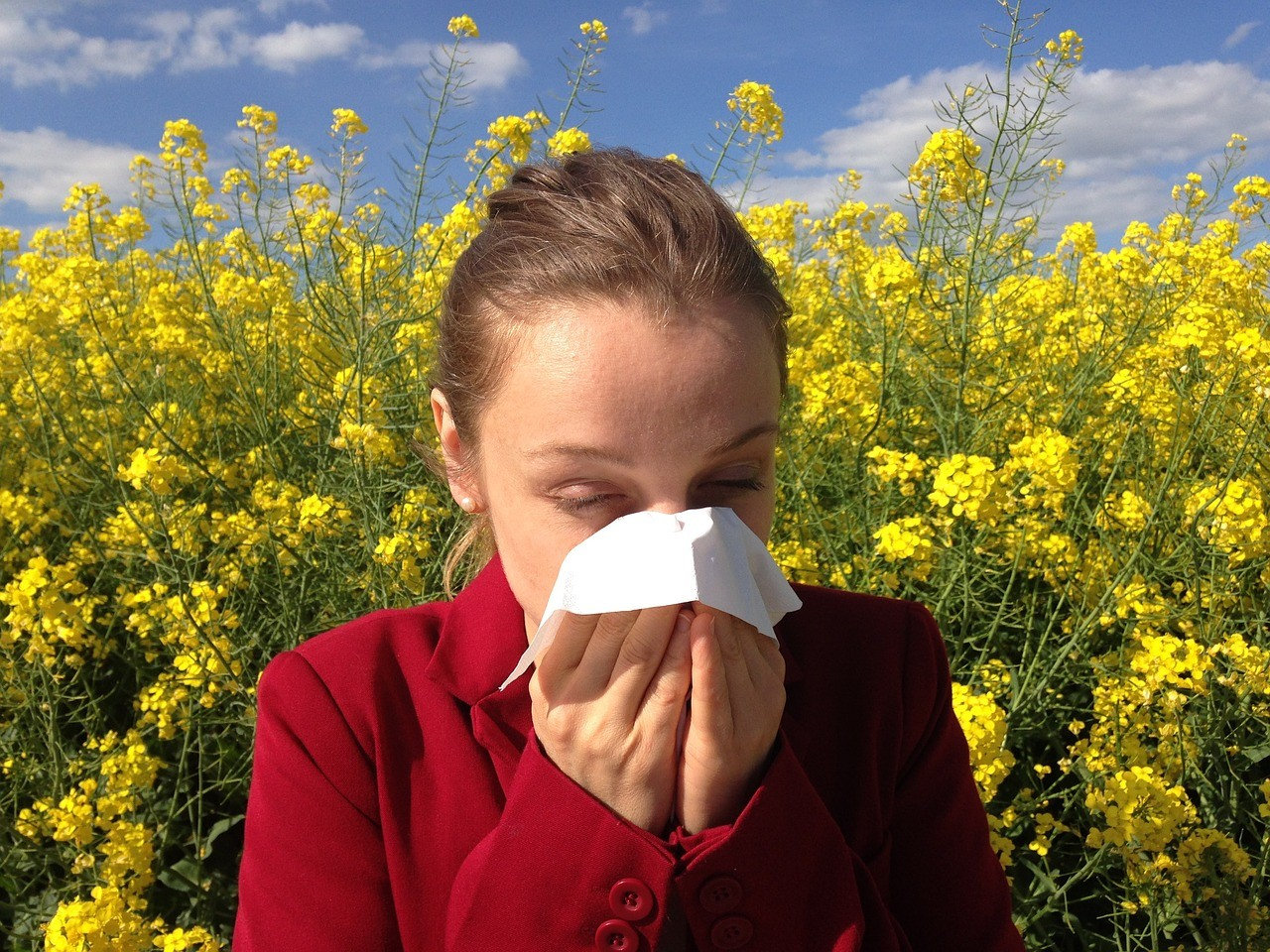 Kétmillió allergiás ember van az országban