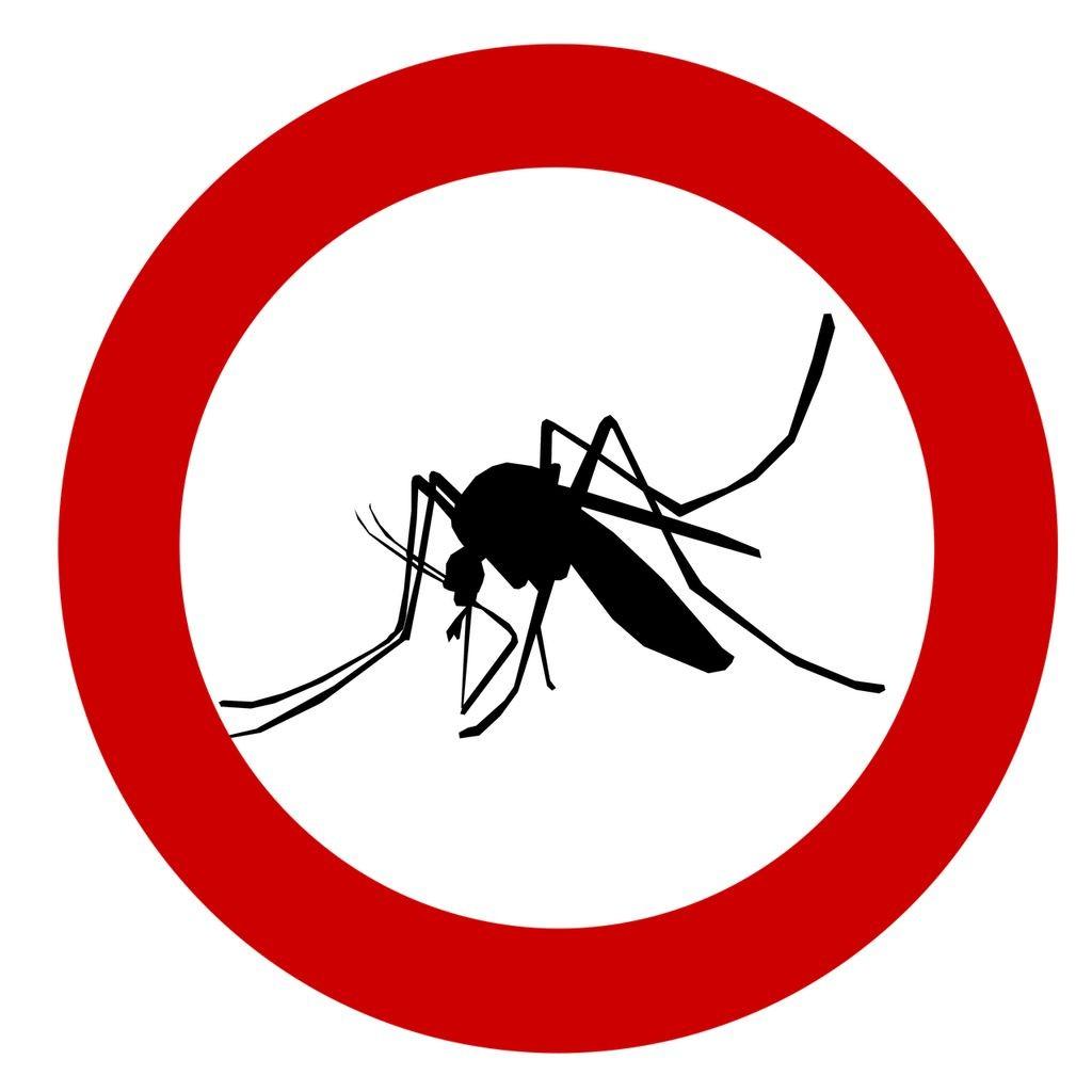 Tolna megyében is folytatódik ezen a héten a szúnyogirtás