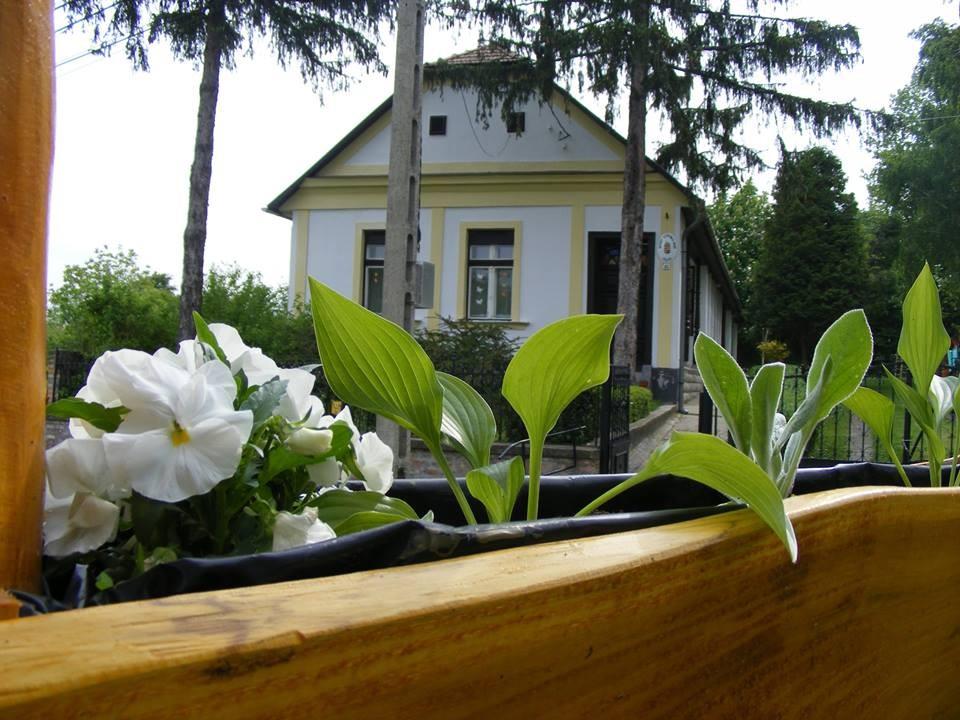 Újabb védett épületeket újítanak fel Závodon
