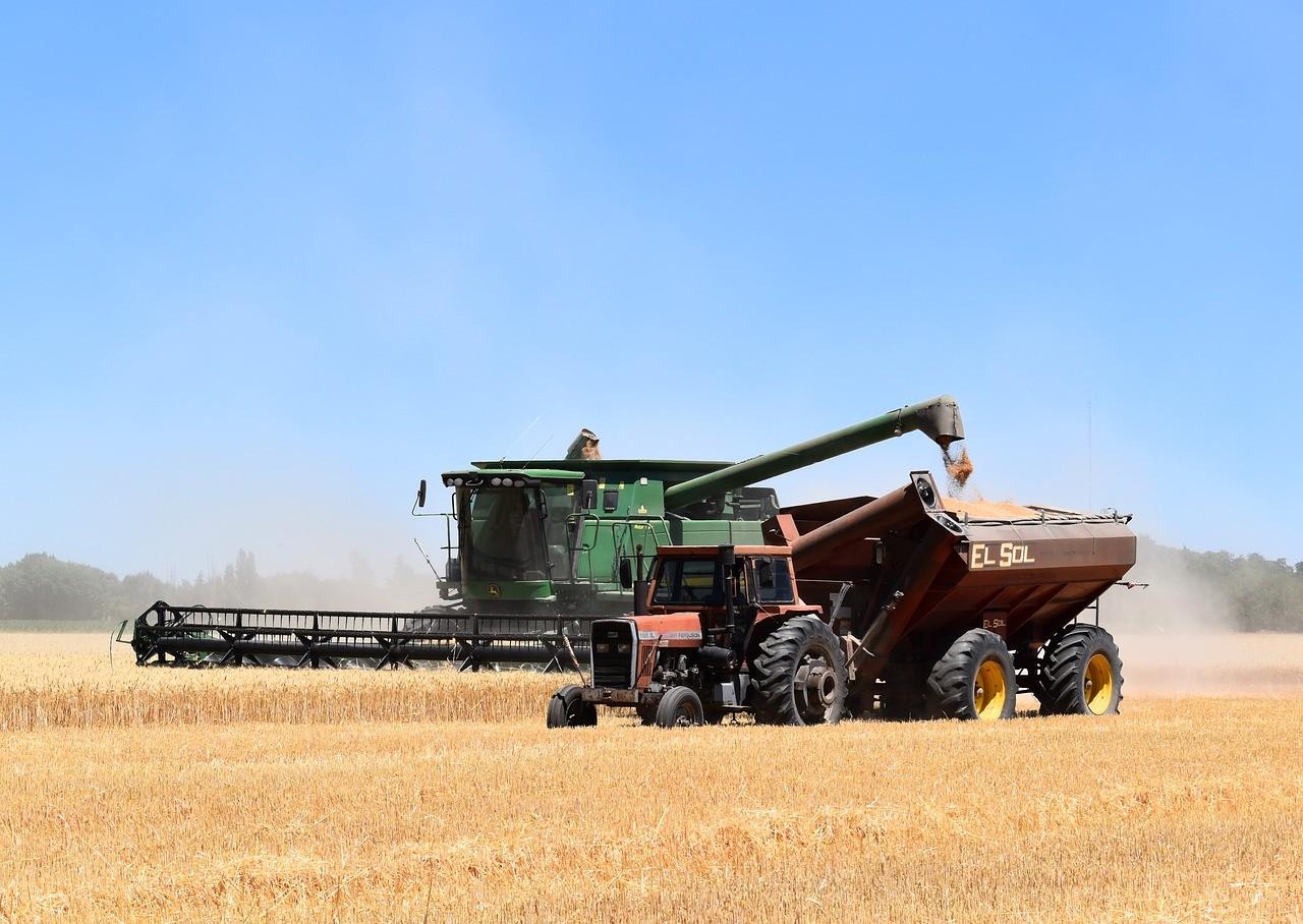 NAK: végéhez közeledik az őszi árpa betakarítása, a termés több lesz a tavalyinál